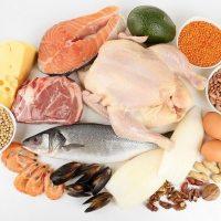 Белковая пища список продуктов