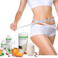 Продукты гербалайф для похудения для начинающих