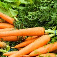 Калорийность моркови
