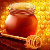 Мед для похудения