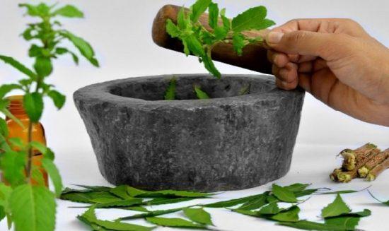Какие травы способствуют похудению?