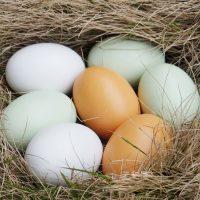 Калории в яйце