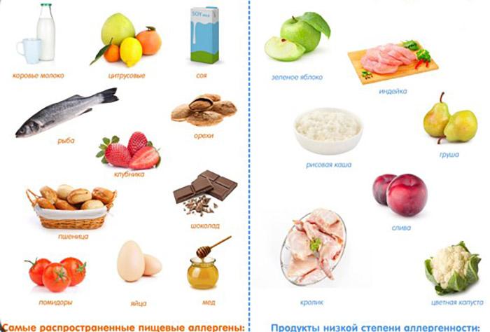 Принципы питания при гипоаллергенной диете > MedElement